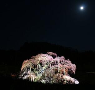 三春町 日本 福島県 三春町の写真素材 [FYI03389858]