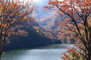 もみじ谷 日本 栃木県 那須塩原市の写真素材 [FYI03389859]