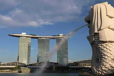 マーライオン シンガポールの写真素材 [FYI03389878]