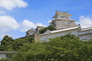 姫路城 日本 兵庫県 姫路市の写真素材 [FYI03389913]