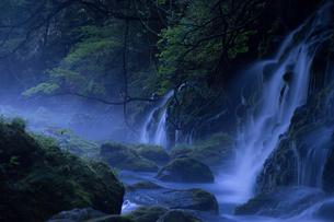 元滝伏流水 日本 秋田県 にかほ市の写真素材 [FYI03390021]