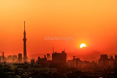 里見公園 日本 千葉県 市川市の写真素材 [FYI03390065]