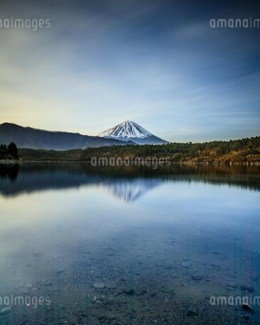 西湖 日本 山梨県 富士河口湖町の写真素材 [FYI03390078]