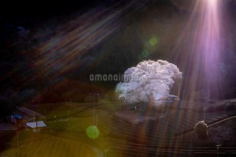 静岡県島田市川根町家山 日本 静岡県 島田市の写真素材 [FYI03390079]