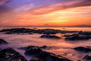 立石公園 日本 神奈川県 横須賀市の写真素材 [FYI03390081]