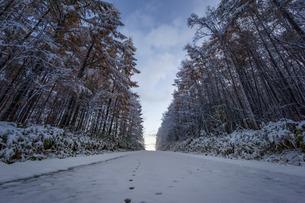 日本 北海道 士別市の写真素材 [FYI03390099]