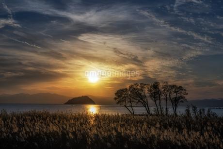 琵琶湖 湖北 日本 滋賀県 長浜市の写真素材 [FYI03390218]