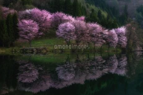 日本 長野県 大町市の写真素材 [FYI03390251]