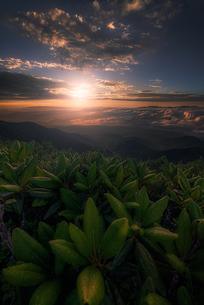 赤岳 (八ヶ岳山系) 日本 山梨県 北杜市の写真素材 [FYI03390264]