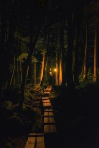 白駒池 日本 長野県 佐久穂町の写真素材 [FYI03390269]