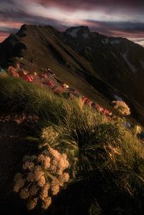 五竜岳 日本 富山県 黒部市の写真素材 [FYI03390272]