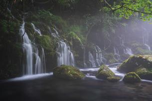 元滝伏流水 日本 秋田県 にかほ市の写真素材 [FYI03390320]