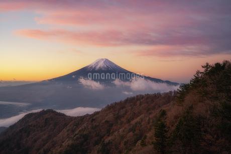 三つ峠山頂付近 日本 山梨県 西桂町の写真素材 [FYI03390329]