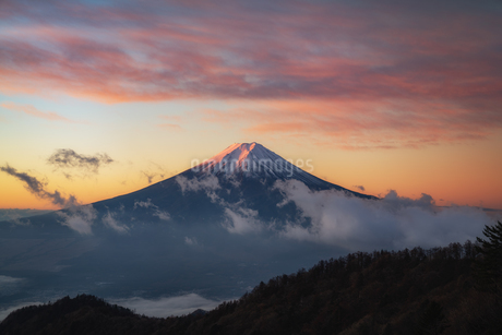 三つ峠山頂付近 日本 山梨県 西桂町の写真素材 [FYI03390332]