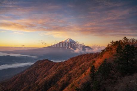 三つ峠山頂付近 日本 山梨県 西桂町の写真素材 [FYI03390334]