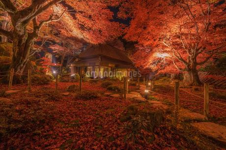 教林坊 日本 滋賀県 近江八幡市の写真素材 [FYI03390340]