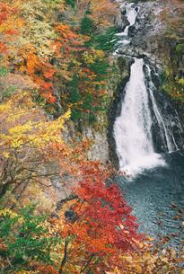 法体の滝 日本 秋田県 由利本荘市の写真素材 [FYI03390446]