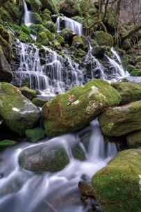 元滝伏流水 日本 秋田県 にかほ市の写真素材 [FYI03390475]