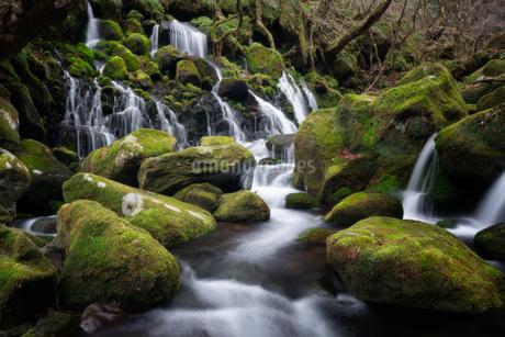 元滝伏流水 日本 秋田県 にかほ市の写真素材 [FYI03390485]