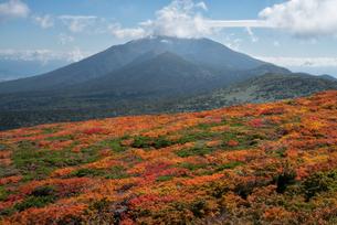 三ツ石山 日本 岩手県 雫石町の写真素材 [FYI03390493]