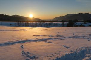 ドイツの農地、雪景色の写真素材 [FYI03390550]