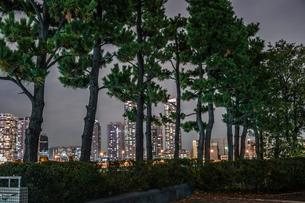 横浜・みなとみらいの夜景の写真素材 [FYI03390696]