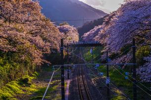 春の山北駅(神奈川県足柄上郡)の写真素材 [FYI03390701]