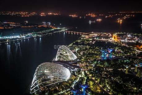 マリーナ・ベイ・サンズ展望台からの夜景(シンガポール)の写真素材 [FYI03390801]