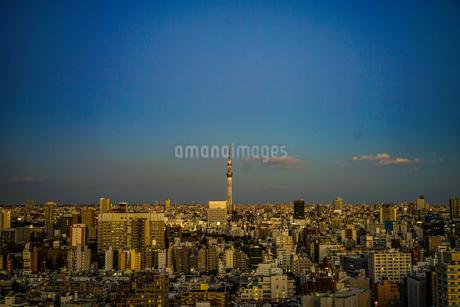 文京シビックセンターからの夕景(スカイツリー方面)の写真素材 [FYI03390870]
