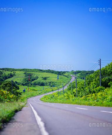 北海道 自然 風景 一本道と青空の写真素材 [FYI03390930]