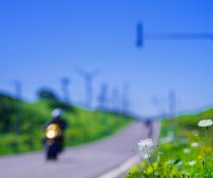 北海道 自然 風景 一本道と青空の写真素材 [FYI03390935]