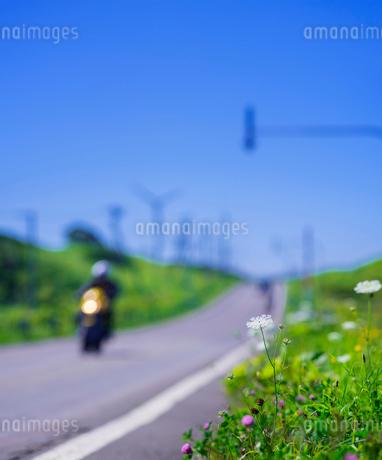 北海道 自然 風景 一本道と青空の写真素材 [FYI03390936]