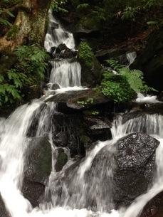 滝の写真素材 [FYI03391017]