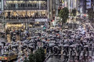 渋谷スクランブル交差点 日本 東京都 渋谷区の写真素材 [FYI03391049]