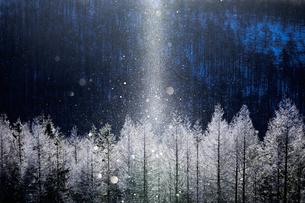 霧ヶ峰 の写真素材 [FYI03391096]