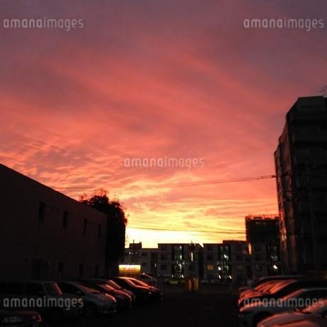 夕焼けの写真素材 [FYI03391126]