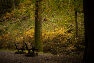 山のベンチの写真素材 [FYI03391129]