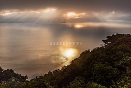 寺山公園 日本 鹿児島県 鹿児島市の写真素材 [FYI03391457]