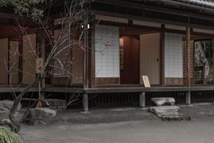 旧島津氏玉里邸庭園の写真素材 [FYI03391576]
