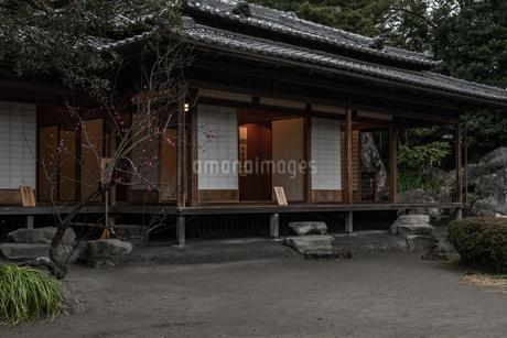 旧島津氏玉里邸庭園の写真素材 [FYI03391579]