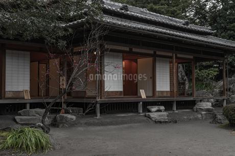 旧島津氏玉里邸庭園の写真素材 [FYI03391580]