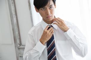 ネクタイを締める20代男性の写真素材 [FYI03391760]