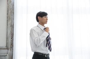 ネクタイを締める20代男性の写真素材 [FYI03391765]