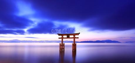 湖中大鳥居 日本 滋賀県 高島市 の写真素材 [FYI03391852]