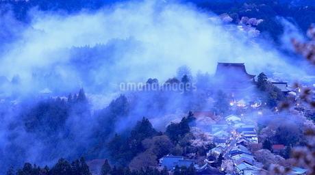 吉野山の桜 日本 奈良県 吉野町の写真素材 [FYI03391854]