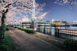 川崎橋と大阪城  日本 大阪府 大阪市の写真素材 [FYI03391865]