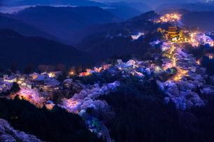 吉野山の桜 日本 奈良県 吉野町の写真素材 [FYI03391874]
