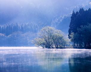 春の余呉湖 日本 滋賀県 長浜市の写真素材 [FYI03391876]