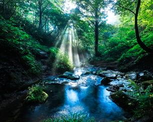 猿壺の滝 日本 兵庫県 美方郡 新温泉町 の写真素材 [FYI03391893]
