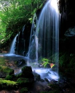 猿壺の滝 日本 兵庫県 美方郡 新温泉町 の写真素材 [FYI03391904]